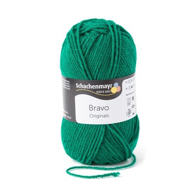 Acrylic yarn Bravo- Pine 08246