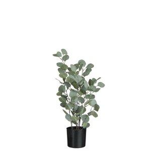 Eucalyptus Planta artificiala in ghiveci, Plastic, Verde
