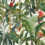 Parrots Of Brasil Set 3 role tapet, Netesut, Multicolor