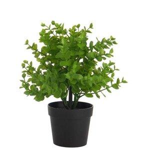 Rachy Planta artificiala in ghiveci, Plastic, Verde
