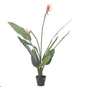 Strelitia Floare artificiala ghiveci, Plastic, Verde