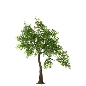 Tree Copac artificial, Plastic, Verde
