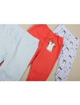 Set 3 pantalonasi cu imprimeuri model 2
