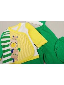 Set 5 piese pisica-soricel verde aprins