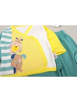 Set 5 piese pisica-soricel verde pal