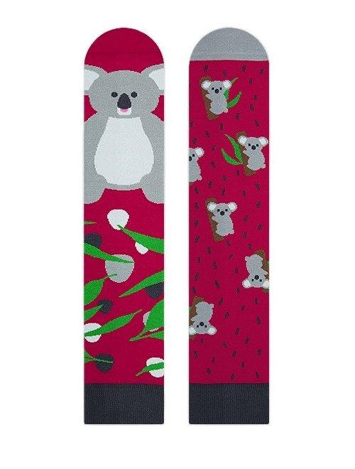 Sosete colorate Nanushki Lala Koala