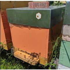 Set magneti apicoli pentru stupina medie